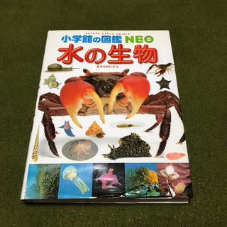 小学館 - 小学館の図鑑 NEO 水の生物