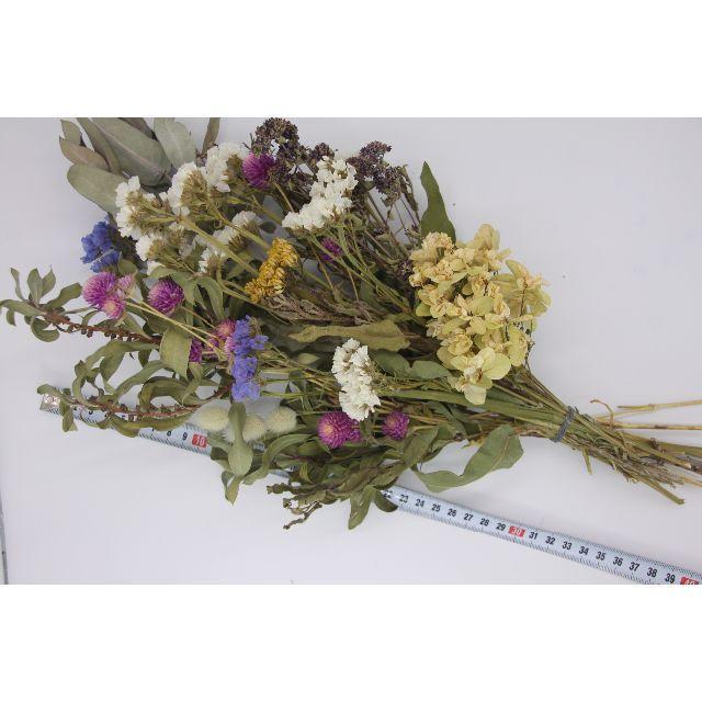 スワッグ用ロング花材④!ユーカリ.アジサイ.ブラシの木など ハンドメイドのフラワー/ガーデン(ドライフラワー)の商品写真