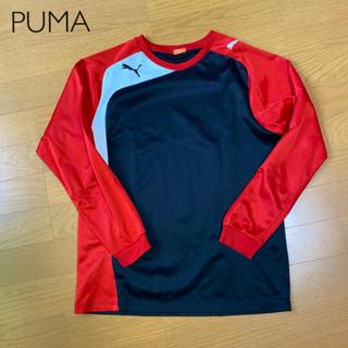 プーマ(PUMA)の【PUMA】サッカーシャツ(ウェア)