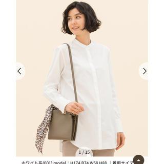 23区 - 完売 中村アンさん着用 CANCLINI スタンドカラー シャツ