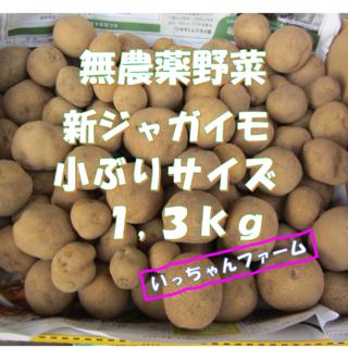 無農薬野菜 新ジャガイモ(きたあかり&ダンシャク) 一口サイズ 1,3kg(野菜)
