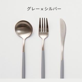 新品 ディナーフォーク・スプーン5セット(カトラリー/箸)