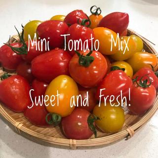 有機無農薬 ミニトマトミックス 900g (野菜)