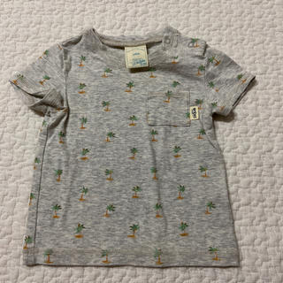 gelato pique - ジェラートピケ ヤシの木 Tシャツ 70 80