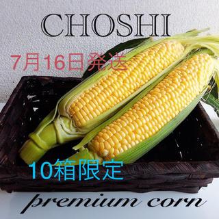 千葉県産 甘ーい とうもろこし(野菜)