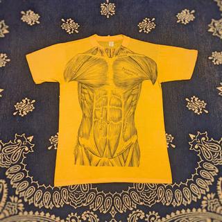 希少 70's 筋肉 Tシャツ ビンテージ アナトミカル マッスル 人体模型