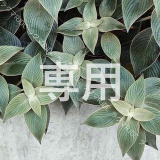LANCOME - 【お試し10㍉✦】PO-01 タンイドル ウルトラウェアリキッド PO01
