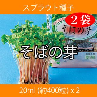 スプラウト種子 S-08 そばの芽 20ml 約400粒 x 2袋(野菜)