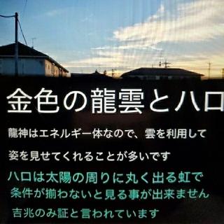 メッセージ☆生命はゆっくり☆龍の絵もお届けします(その他)
