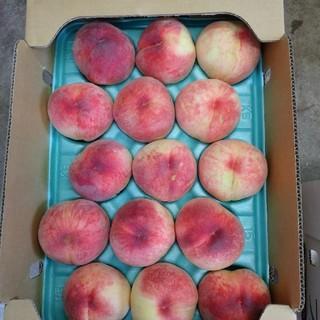 桃 果物 山梨県 5キロ