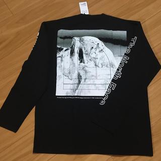 ザノースフェイス(THE NORTH FACE)のノースフェイス グラフィック ロングTシャツ♪(Tシャツ/カットソー(七分/長袖))
