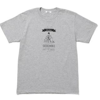 アダムエロぺ(Adam et Rope')のアダムエロペのTシャツ 新品 グレー(Tシャツ/カットソー(半袖/袖なし))