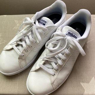 アディダス(adidas)のちゃんぼ様専用 adidas Ortholite Float 27.5(スニーカー)