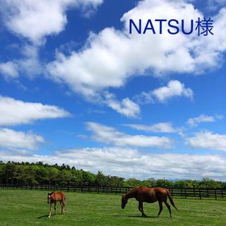 NATSU様専用♡(はんこ)