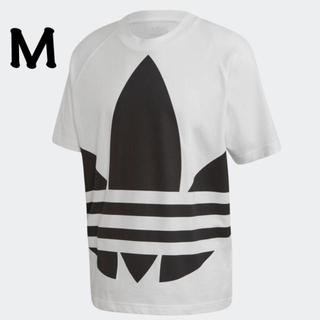 adidas - Mサイズ 新品 アディダス ビッグトレフォイルボクシー Tシャツ