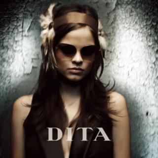 ディータ(DITA)のDITA サングラス(サングラス/メガネ)