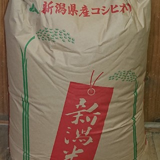 農家直送★新潟県産コシヒカリ★白米10kg★送料込み D