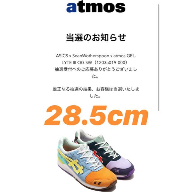 asics(アシックス)のASICS x SeanWotherspoon x atmos 28.5 メンズの靴/シューズ(スニーカー)の商品写真