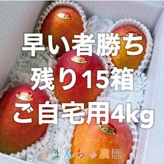 【農園直送】宮古島産完熟マンゴー4kg(8〜10個)(フルーツ)