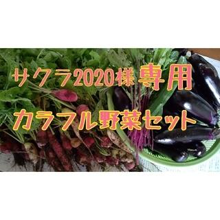 サクラ2020様専用 カラフル野菜セット(野菜)