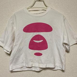 アベイシングエイプ(A BATHING APE)のAape Tシャツ XS(Tシャツ(半袖/袖なし))