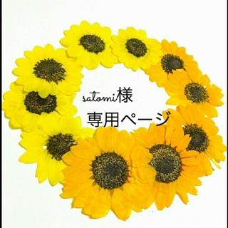 satomi様 専用ページ(ドライフラワー)
