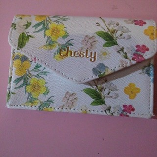チェスティ(Chesty)のレア 新品★chesty 美人百科付録 ミニ財布(財布)
