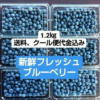 新鮮 フレッシュなブルーベリー(フルーツ)