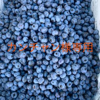 生ブルーベリー4キロ カンチャン様専用(フルーツ)