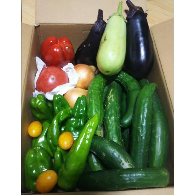 野菜  詰め合わせ 食品/飲料/酒の食品(野菜)の商品写真