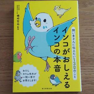 アサヒシンブンシュッパン(朝日新聞出版)のインコがおしえるインコの本音 飼い主さんに伝えたい130のこと    (人文/社会)