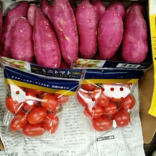 (新物)宮崎紅さつまいも(ミニサイズ)1kgとミニトマト(アイコ)約400g