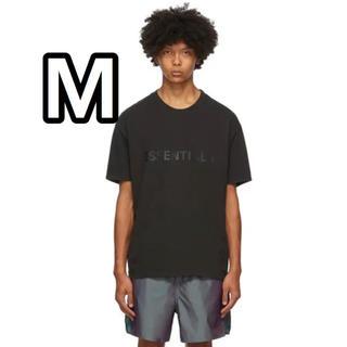 フィアオブゴッド(FEAR OF GOD)の新品ssense購入【M】FOG ESSENTIALS Tシャツ(Tシャツ/カットソー(半袖/袖なし))