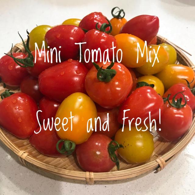 有機無農薬 ミニトマトミックス  900g 食品/飲料/酒の食品(野菜)の商品写真