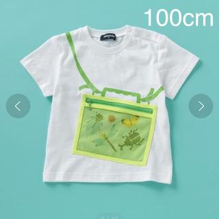 kladskap - クレードスコープ Tシャツ 100cm  2枚セット