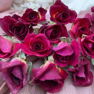 ミニ薔薇(茎長め)ドライフラワー★15輪セット+おまけ1輪付き★花材 素材★バラ(ドライフラワー)