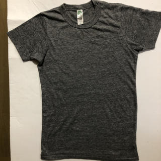 オルタナティブバージョンダブルアール(alternative version WR)のalternative オルタナティブ カットソー Lとして着用(Tシャツ(半袖/袖なし))