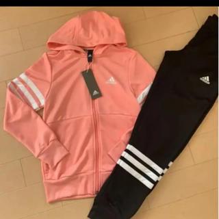 アディダス(adidas)の新品 160 アディダス ジャージ 上下 ピンク ブラック 女の子 (その他)