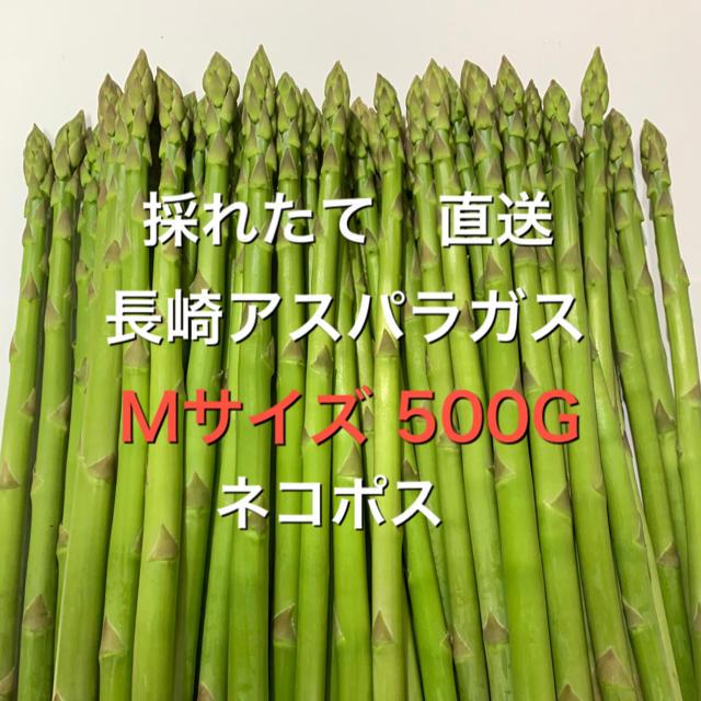 長崎産アスパラガス Mサイズ 500G 食品/飲料/酒の食品(野菜)の商品写真