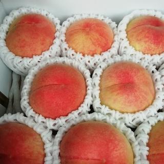 福岡県朝倉市の大きくてキレイな桃が入荷しました!