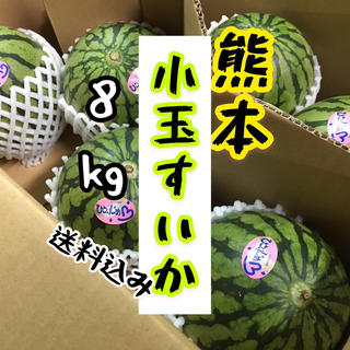 熊本県産 小玉すいか 8kg