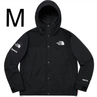Supreme - Mサイズ supreme north face mountain parka
