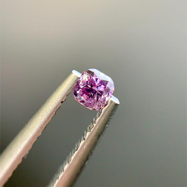 特価 インテンス ピンク パープル レディースのアクセサリー(その他)の商品写真