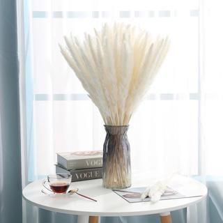 パンパスグラス 白 15本 ドライフラワー 花束 ウェルカムスペース スワッグ(ドライフラワー)