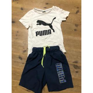 PUMA - プーマ  Tシャツ ハーフパンツ セット 120