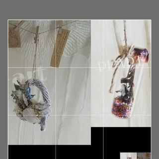 [ラクマ便]b冬のシックなオーナメントとシャーベット色プチシェル貝殻ガーランド(ドライフラワー)