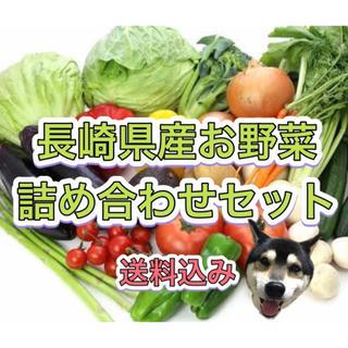 7/21発送 長崎県産 新鮮 野菜 詰め合わせ 5kg箱 80サイズ 8品🐯(野菜)