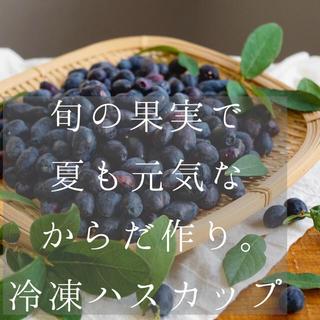 北海道産 自然栽培の冷凍ハスカップ 3kg(フルーツ)