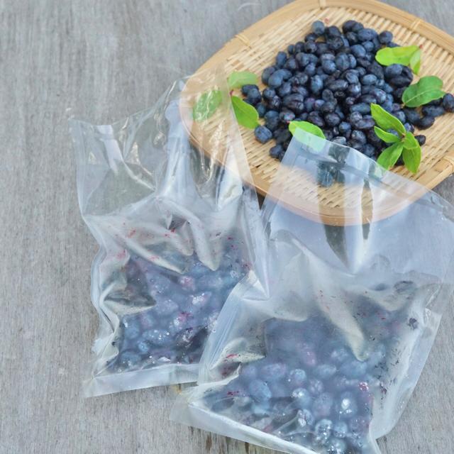 北海道産 自然栽培の冷凍ハスカップ3kg(250g×12袋) 食品/飲料/酒の食品(フルーツ)の商品写真