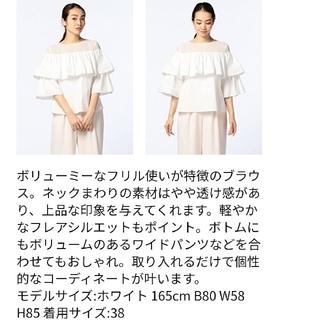 ノーリーズ(NOLLEY'S)のノーリーズ トップス 日本製(カットソー(長袖/七分))